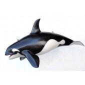 Orca klein
