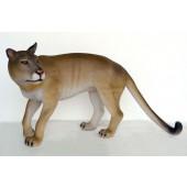 Puma Kuguar