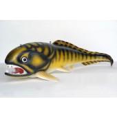 Dunkleosteus Urzeitfisch