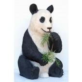 Pandabär Bambus fressend