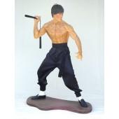 Kung-Fu Kämpfer