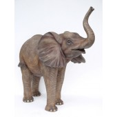 Baby Elefant stehend