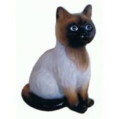 Braunes Kätzchen sitzend