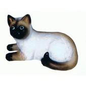 Braunes Kätzchen liegend