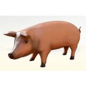 Modernes Schwein lebensgroß