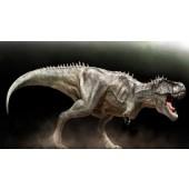 Tyranosaurus REX XXL