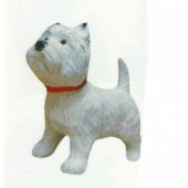West Highland Terrier mit rotem Halsband