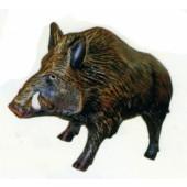 Wildschwein Keiler laufend