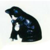 schwarze Katze mit Katzenkind