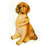 Labrador sitzend