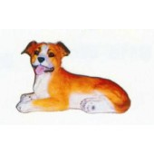 American Stafford Terrier Welpen liegend