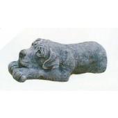 Labrador liegend grau