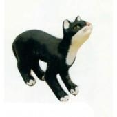 Katze macht Katzenbuckel