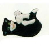 verspielte Katze schwarz weiß