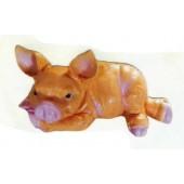 liegendes Schweinchen