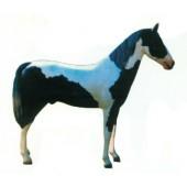 schwarz weiß geflecktes Pferd groß