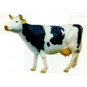 große Kuh schwarz weiß