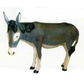 großer grauer Esel