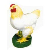 weiß gelbe Henne