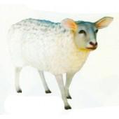 Großes weißes Wollschaf