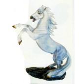 aufbäumendes Pferd weiß
