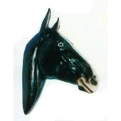 schwarz weißer Pferdekopf