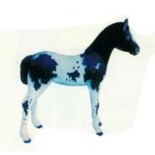 geflecktes Pony