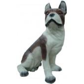 franz. Bulldogge sitzend, Kampfhund