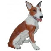 Hund Pitbull sitzend