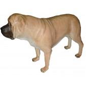 Hund,Mastiff