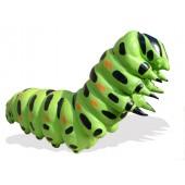 Schmetterlingslarve
