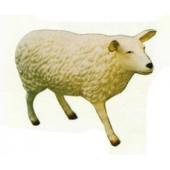 großes weißes Schaf