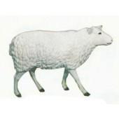 großes laufendes Schaf