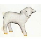 kleines stehendes Schaf weiß