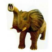 kleiner Elefant Rüssel oben
