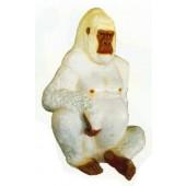sitzender großer Berggorilla weiß