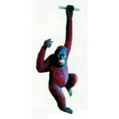 hängender Orang Utan Affe groß