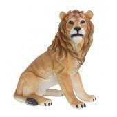 Löwe sitzend Blick rechts