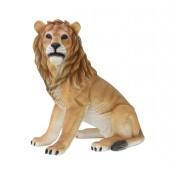 Löwe sitzend Blick links