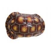 Brauner Schildkrötenpanzer für Wand