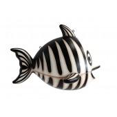 Schwarzweißer Knochenfisch