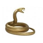 Goldene Kobra Schlange