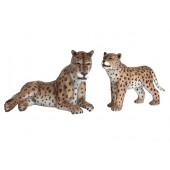 Gepard mit Baby