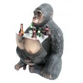 Eisfach im Gorilla