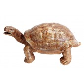 Getränkefach goldene Schildkröte