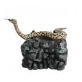 Anakonda Schlange auf großem Stein