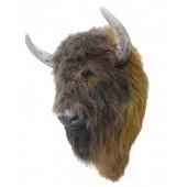 Brauner Büffelkopf