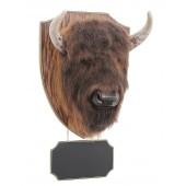 großer Büffelkopf mit Angebotsschild