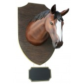 großer Pferdekopf mit Angebotsschild