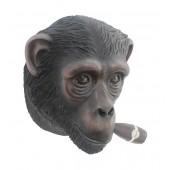 Affenkopf mit Zigarre